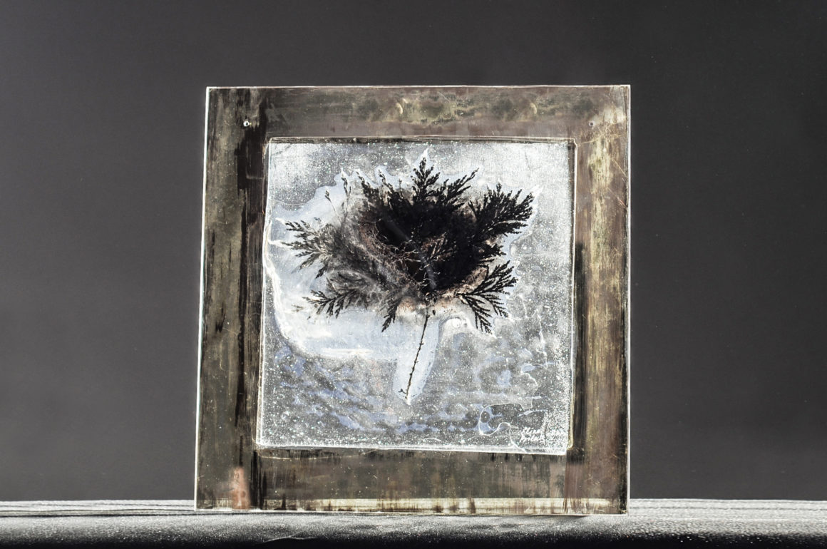 Glass sculpture by Elina Bilous that looks like a leaf or tree and is in black and white color